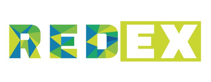 Entrenamiento REDEX Reingenieria del éxito coaching vivencial de alto impacto